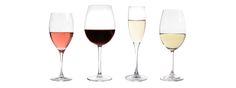 Want to start your own wine club? Our guide shows you how!