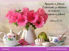 Salmos 27:14 Aguarda a Jehová; Esfuérzate, y aliéntese tu corazón; Sí, espera a Jehová.♔