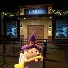 #Pusheen brujita está encantada de haber venido a la inauguración de @harrypotterexpo_madrid_ #pelucheando #HarryPotter #witchsheen #pusheenthecat #HarryPotterTheExhibition #softtoys #softies #plush #plushies #instatoys #kawaii #wizard #magia #magic