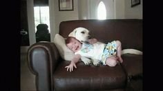 You let them play with your kids…Yes your REAL kids! | 13 Reasons Dogs Are Just Like Babies