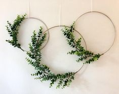 Metal Hoop Wreath Simplistic Shabby Chic Green Eucalyptus Wreath Succulent Gold or Brass Simple Wedding Baby Nursery Rustic Metall Hoop Kranz simpel Shabby Chic grün Eukalyptus Kranz saftig Gold oder Messing einfache Hochzeit Baby Kindergarten rustikal Shabby Chic Green, Shabby Chic Homes, Shabby Chic Decor, Shabby Cottage, Home Wall Decor, Cheap Home Decor, Diy Home Decor, Green Wall Decor, Lavender Wreath