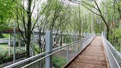 Stadtpark Papenburg / RMP Stephan Lenzen Landscape Architects