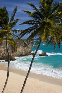"""""""Dry to half wet to completely wet"""" is the transition of colors the sand in this Barbados beach has."""