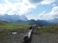 Pale di San Martino (Val di Fassa)