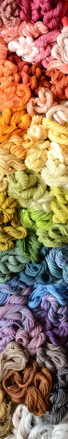 Rainbow of yarns used in all three Knitter's Curiosity Cabinet books (plus plans for a project with many of them)