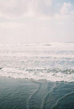 I beach life l