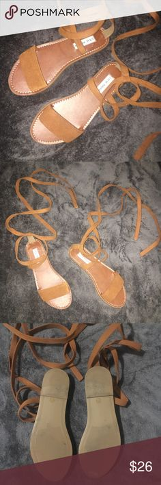 Steve Madden Brown Criss Cross Sandals Steve Madden Brown Criss Cross Sandals. Size 7. True to Size. Only worn Once. In Excellent conditions!! Steve Madden Shoes Sandals