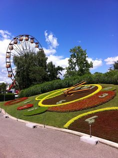 Reloj Floral Ginebra-Fotografía: Martha Villegas