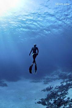 Freediving / apnea in Dahab, Red Sea Egypt. www.dahabvillas.com
