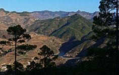 Parque Natural de Tamadaba en Gran Canaria
