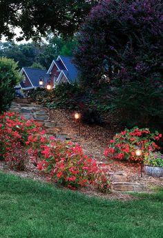 Progress Lighting coventry path lights add kisses of light along landscape paths.
