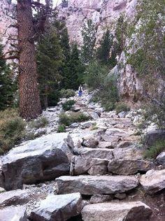 Mary Jane Falls Trail - Las Vegas - Für die, die weniger Action wollen. http://sixt.info/sixtfleet_14