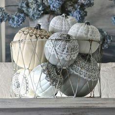 Lace top grey pumpkins
