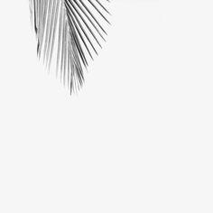 Saint Studio is a multidisciplinary design studio based in Brazil, specialised in smart minimalist apparel, accessories and original art pieces. Creat...