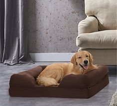 Petlo Orthopedic Mattress Pet Sofa Bed - Solid Memory Foam Couch for Medium / Large Dogs