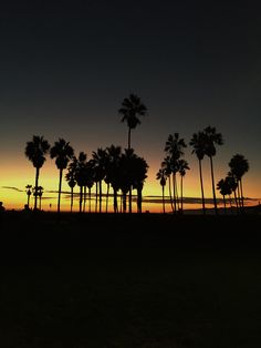 Sunset, in Venice, California | Marco André