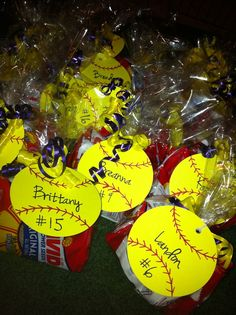 Softball Gifts DIY | Softball treats for the team. Contains him and packs of sunflower ...