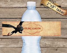 How to Train Your Dragon 2 Bottle Labels, Birthday Labels, Dragons 2 Water Bottle Labels, Party Printable, INSTANT DOWNLOAD