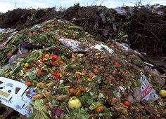 Google Afbeeldingen resultaat voor http://www.totallygreen.com/wp-content/uploads/2012/04/Food-Waste-2.jpg