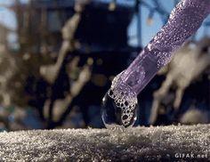 Gefrierende Seifenblase, gif'd | Das Kraftfuttermischwerk