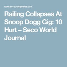 Railing Collapses At Snoop Dogg Gig: 10 Hurt – Seco World Journal