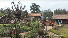 Nikmati liburan dengan nuansa peternakan eropa di Lembang #Bandung.       #travelling