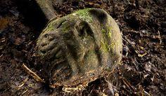 """En la selva hundureña, investigadores creen haber encontrado no sólo los restos de la mítica """"Ciudad del Dios Mono"""", sino una civilización olvidada."""