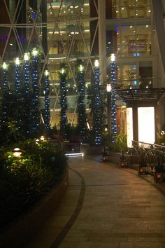 Central Park at night - Oasis of the Seas