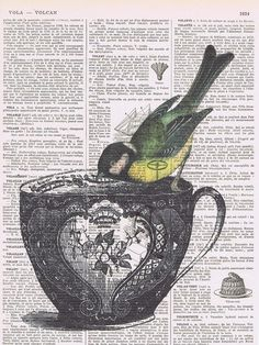Bird,Tea Cup.birthday,collage.Gift. Antique Book Page  Print