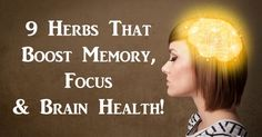 Whether its from stress, lack of sleep, being overworked or staring a computer screen all day, brain fog often has a way of sneaking up on you. As hard as you try to concentrate, your brain just can't. Womens Wellness, Health And Wellness, Health Tips, Healthy Brain, Brain Health, Brain Fog, Body Hacks, Stress, Herbs