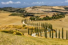 How about a road trip through Italy? This guide shows the most scenic drives in Tuscany and its Val d'Orcia valley with amazing landscapes and medieval villages. Italy Vacation, Italy Travel, Places To Travel, Places To See, Travel Presents, Best Travel Sites, Italian Farmhouse, Florence Tuscany, Road Trip Hacks