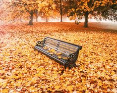 Photographer Kristina Makeeva Captures What Autumn Looks Like Around Europe [[MORE]]More info: Instagram