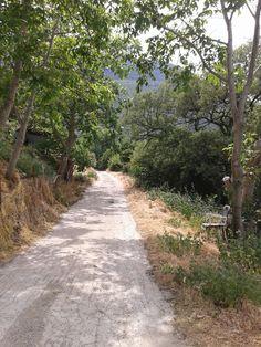 Korwneia Voiwtia, Greece