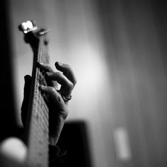 Project 365 Day 104: On The Frets [explored!]
