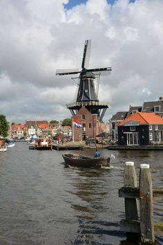 Olanda.   Haarlem città dei tulipani poco distante da Amsterdam