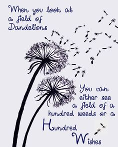 Dandelion wishes - gives you a whole new perspective when you look at it this way!