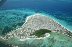 La #Isla La Tortuga, es un tributo a las cuatro especies de #tortugas marinas en extinción que llegan a desovar en sus costas y hacen vida en tan deslumbrante paisaje.