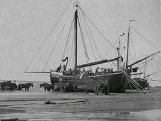 Sailboat, Sailing Ships, Netherlands, Holland, Dutch, Traditional, Flat, Water, Design
