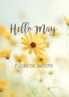 WELCOME❤BOARD. Hello May