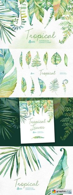 Tropical watercolor leaves  stock images