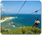 We want to zipline! This is the one we are will be doing in Port/City: Labadee, Haiti. Nov 2012