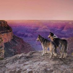 @mayaandava enjoying the sunset in the Grand Canyon.