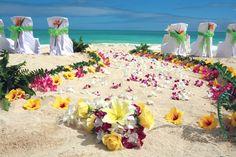 oahu flowers - Google Search
