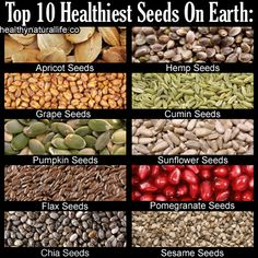 The Top 10 Healthiest Seeds On Earth <3