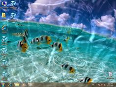 Five Reliable Sources To Learn About Animated Wallpaper Windows  Free Download Animated Wallpaper Windows