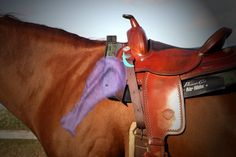 Proper Western Saddle Placement