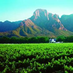 Great Cape Escapes: The Culinary Charms of Franschhoek, South Africa African Love, Dutch House, Cape Town South Africa, Kwazulu Natal, African Countries, Oh The Places You'll Go, Tanzania, The Good Place, Cape Dutch
