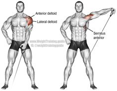 Cable one arm lateral raise. Main muscles worked: Lateral Deltoid, Anterior Deltoid, Supraspinatus, Middle and Lower Trapezii, and Serratus Anterior.