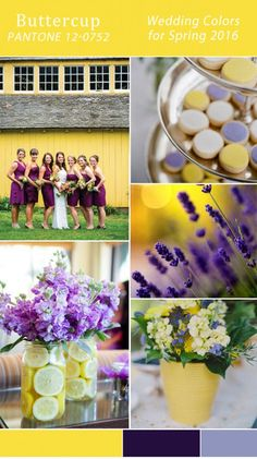 Top 10 Wedding Color Scheme Wedding Trends Part One countryside shades of purple and yellow 2015 wedding color trends Yellow Wedding Colors, Spring Wedding Colors, Purple Wedding, Wedding Color Schemes, Wedding Flowers, Purple Yellow, Spring Colors, Yellow Theme, Purple Ombre
