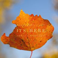 Happy Fall from all of us at Quest for Wellness!  www.questforwellness.com